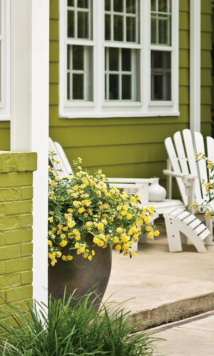 Use greenery as an outdoor paint color, and add white as a contrast ...