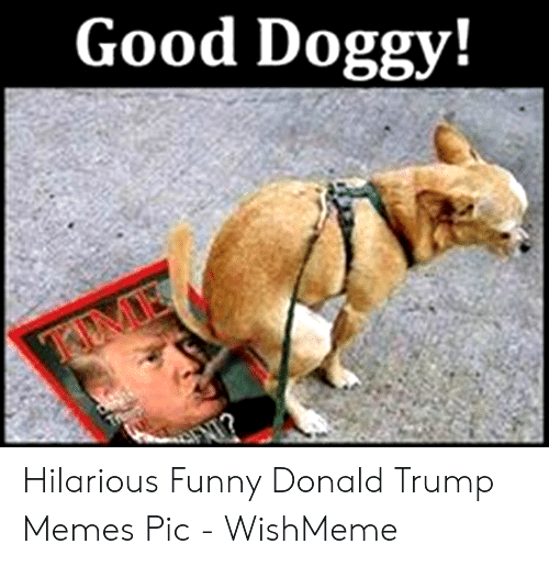 Happy Birthday Memes For Guys in 2020 Funny friday memes