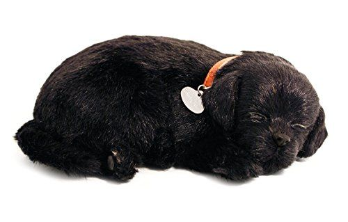 Perfect Petzzz Black Lab Breathing Puppy In Dog Bed This Is An Amazon Affiliate Link More Info Could B Black Lab Puppies Sleeping Puppies Dog Stuffed Animal