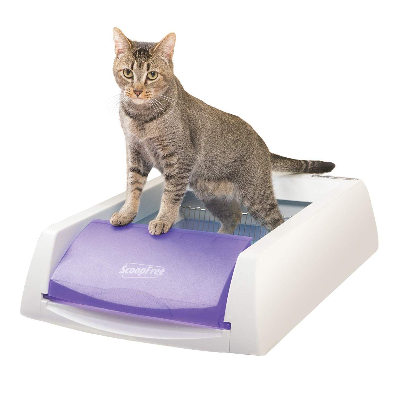 PetSafe ScoopFree Original SelfCleaning Cat Litter Box