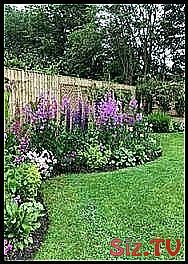 Low maintenance landscape midwest 70  Ideas Low ma