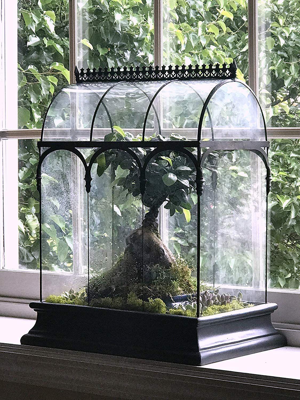 H potter glass plant terrarium planter container wardian case