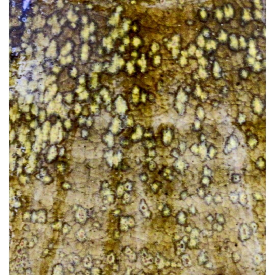 """Detail"" of Wood Fired & Salt Glazed Bowl. #robertcomptonpottery @robertcomptonpottery  #vermontsmallbusiness  #vermontcraftcouncil  #vermontlife #thisisvt #stoneware #stonewarepottery #handmadeceramics #handmade #handthrown #noborigama #woodfired #saltglazed #crystals"
