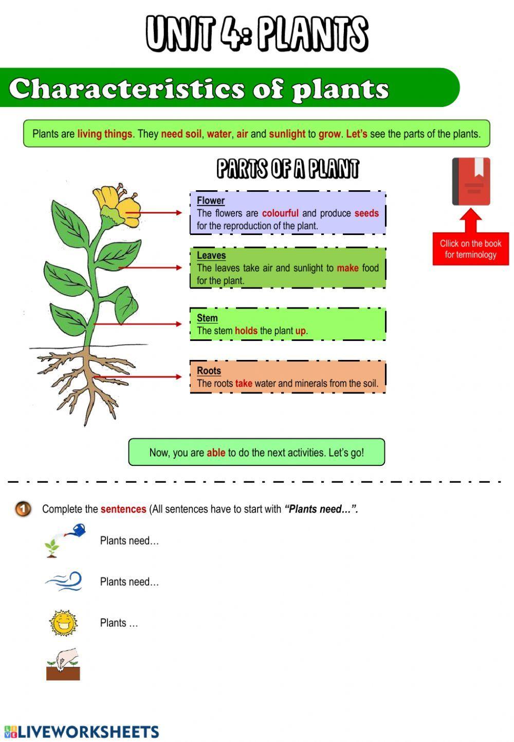 The Plants Interactive Worksheet Plants Worksheets 1st Grade Worksheets Worksheets [ 1443 x 1000 Pixel ]