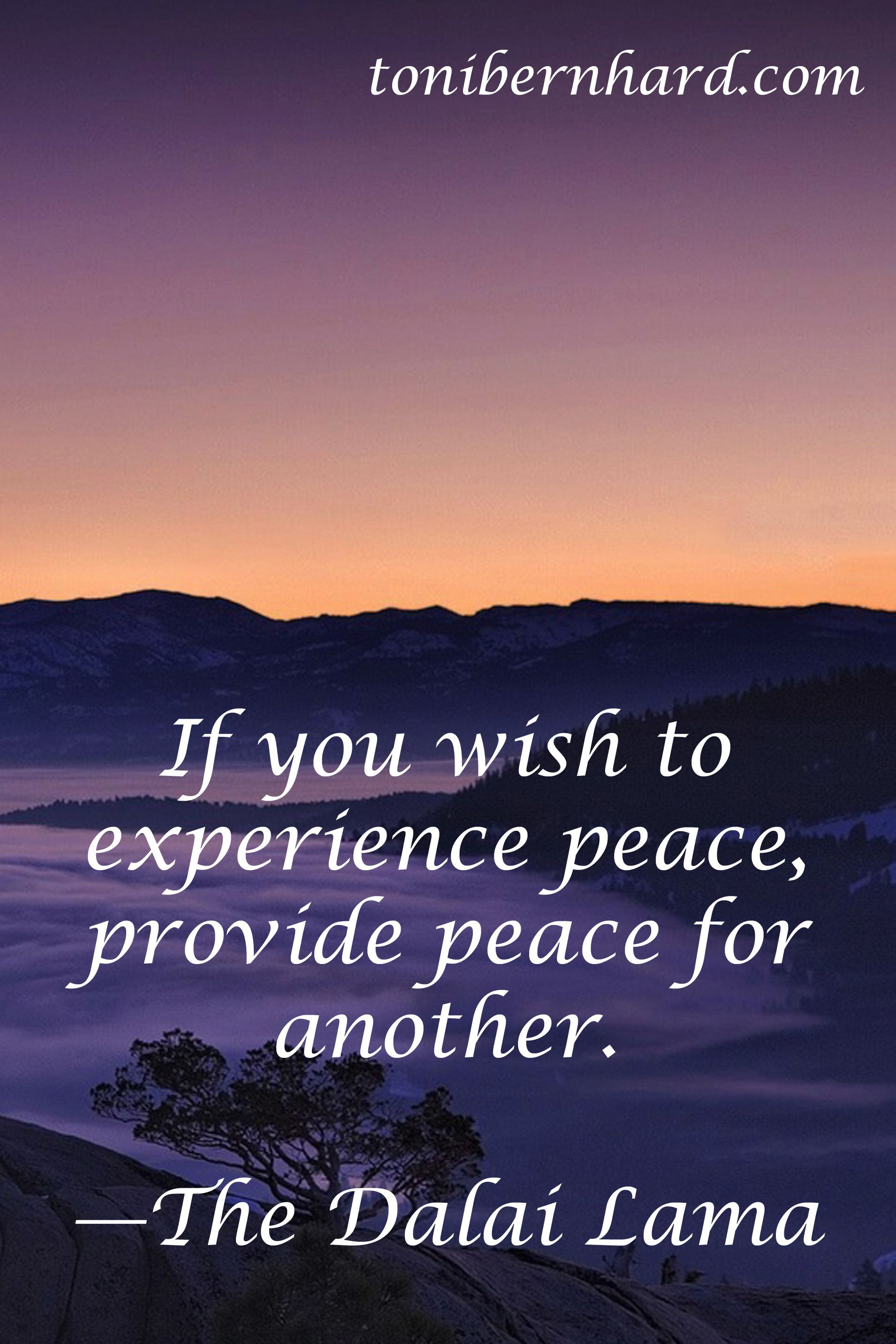 """""""If you wish to experience piece, provide peace for another."""" The Dalai Lama Have just visited an elderly person in hospital and unsure whether staff see the intelligence and awareness which is still there."""