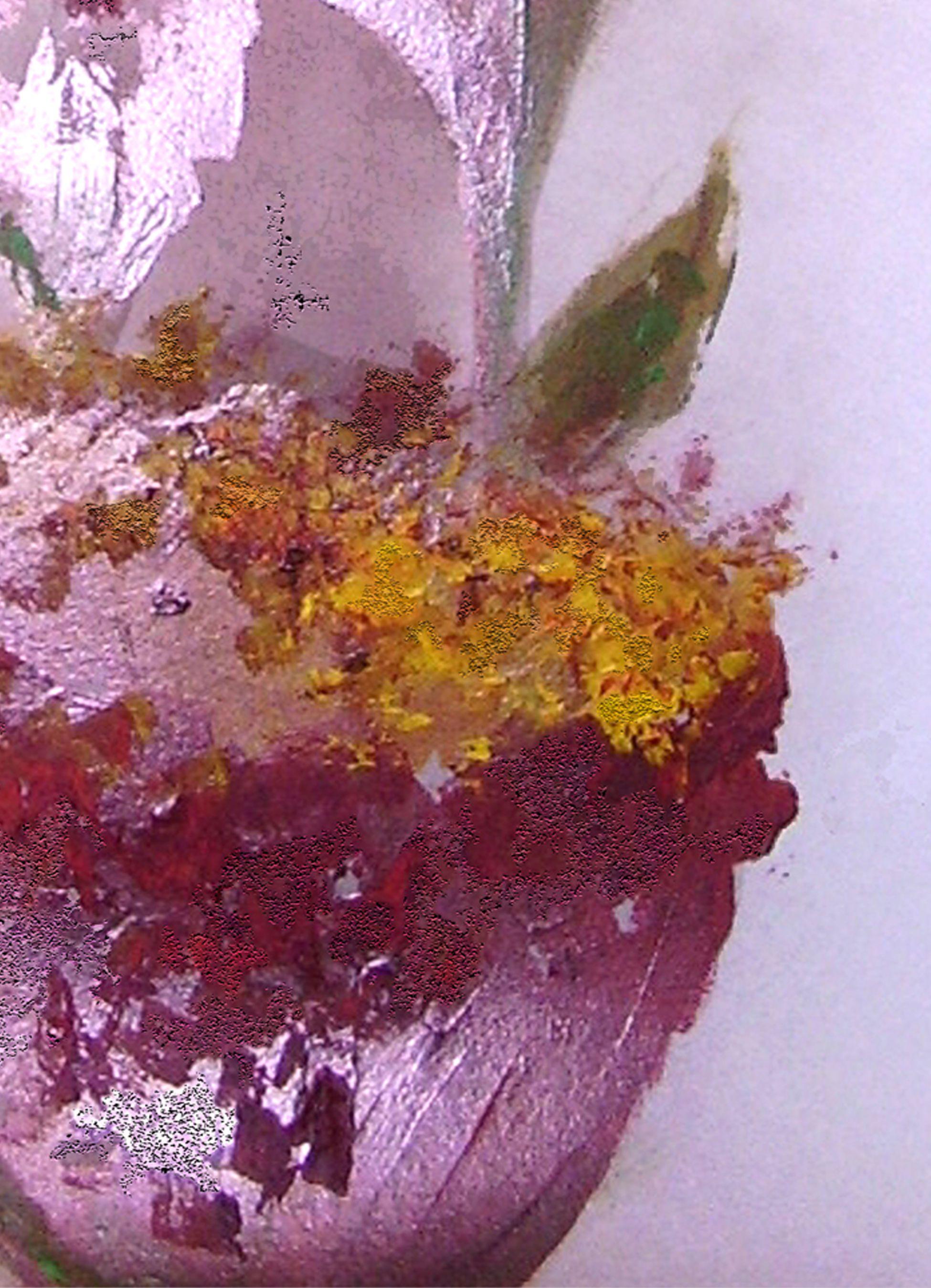 Carte De Remerciements Deces Branche Cerisier Aquarelle Carte De