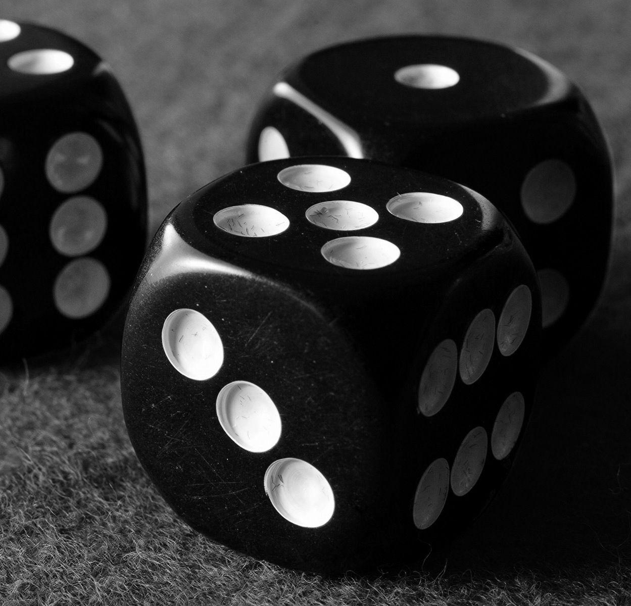 Roll The Dice Papel De Parede Preto E Branco Leao Preto E Branco Preto E Branco
