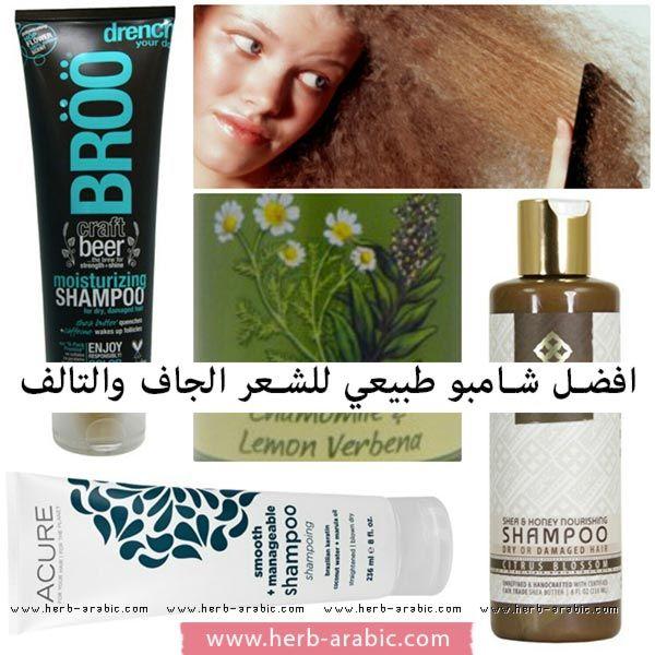 افضل شامبو منتجات الشعر الجاف في اي هيرب Dry Shampoo Hairstyles Moisturizing Shampoo Dry Shampoo