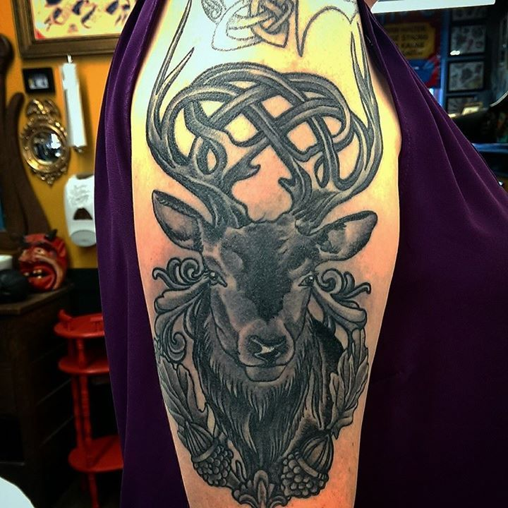 celtic stag by adam sky rose gold 39 s tattoo san francisco ca imgur tatoo ideas pinterest. Black Bedroom Furniture Sets. Home Design Ideas