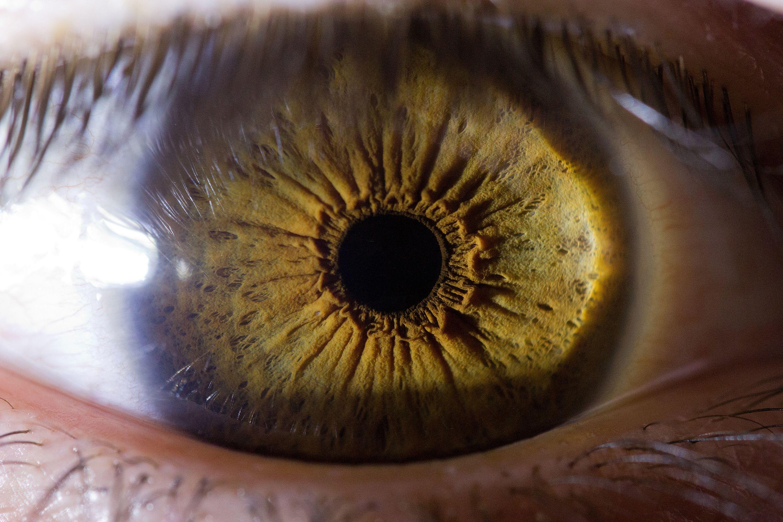 Image Gallery iris eye macro photography