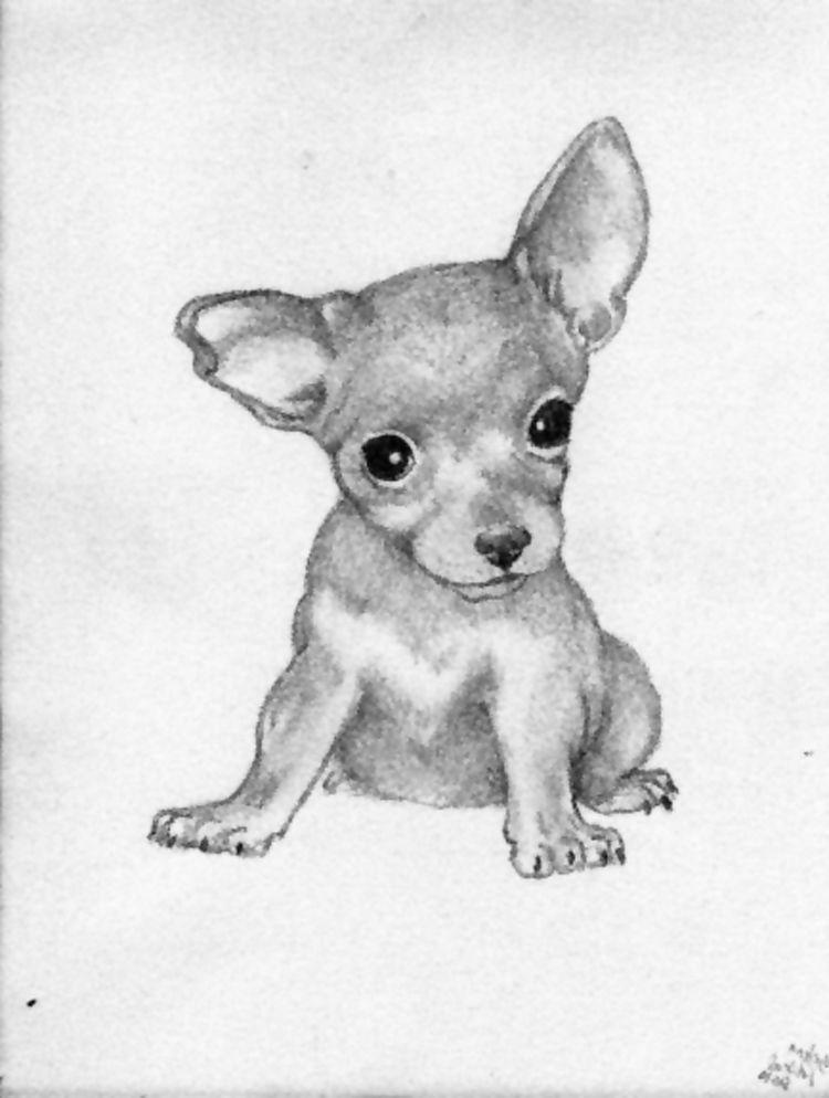 chi chi chihuahua sketch by pascalunaoriginals on