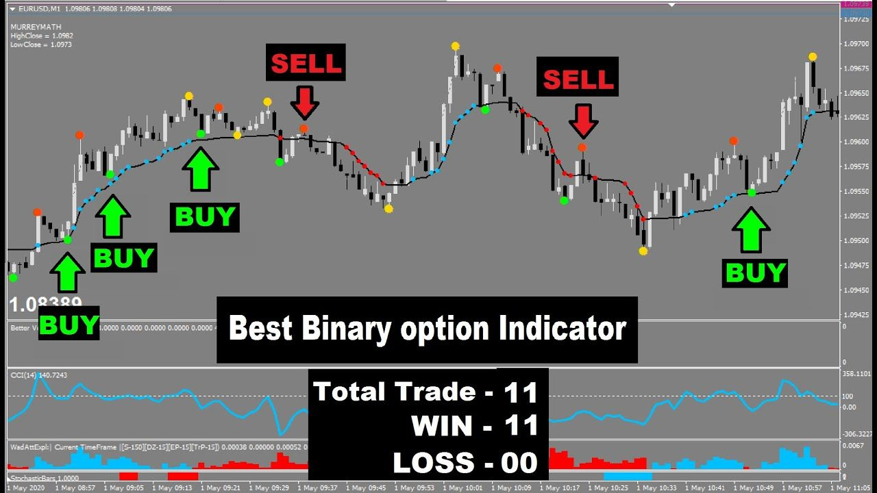 Investor binary options indicator mt4 frc cryptocurrency