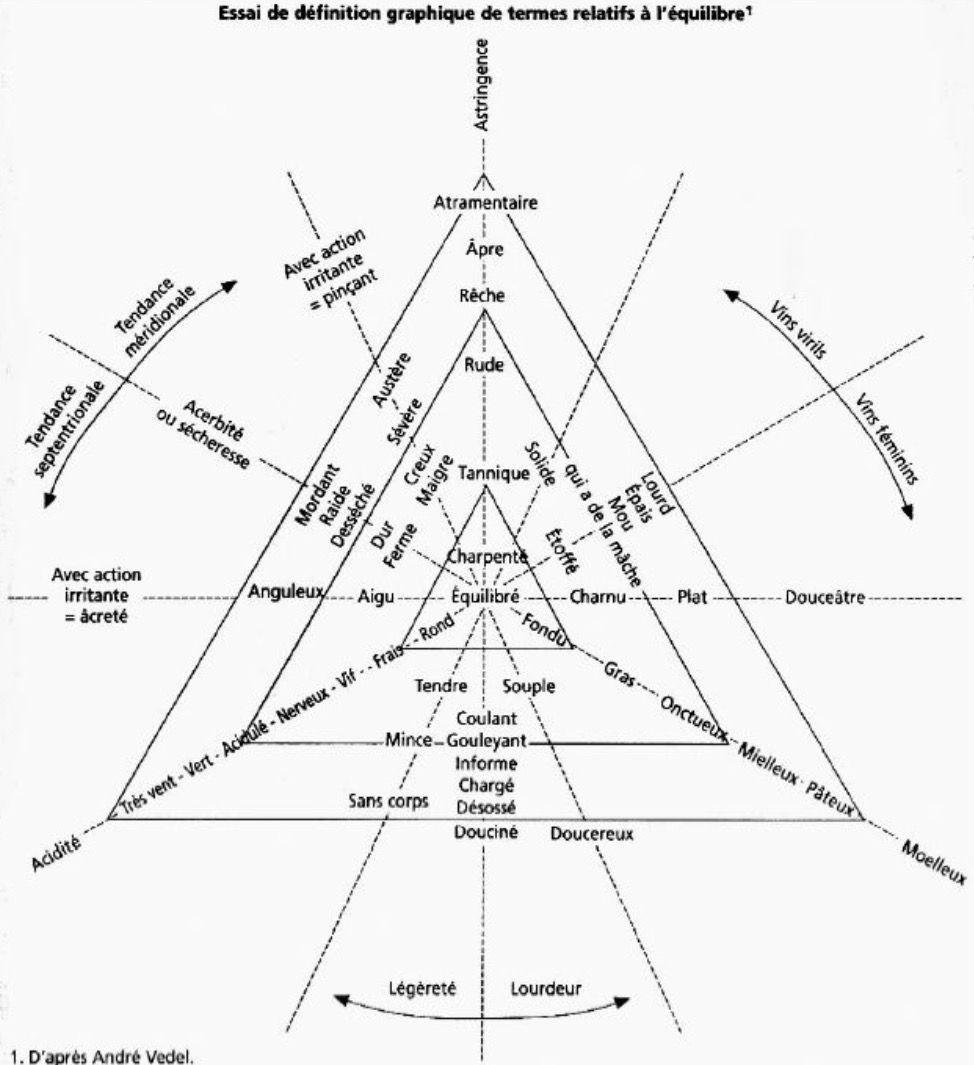 Essai de définition graphique de l'équilibre du vin selon A. Vedel