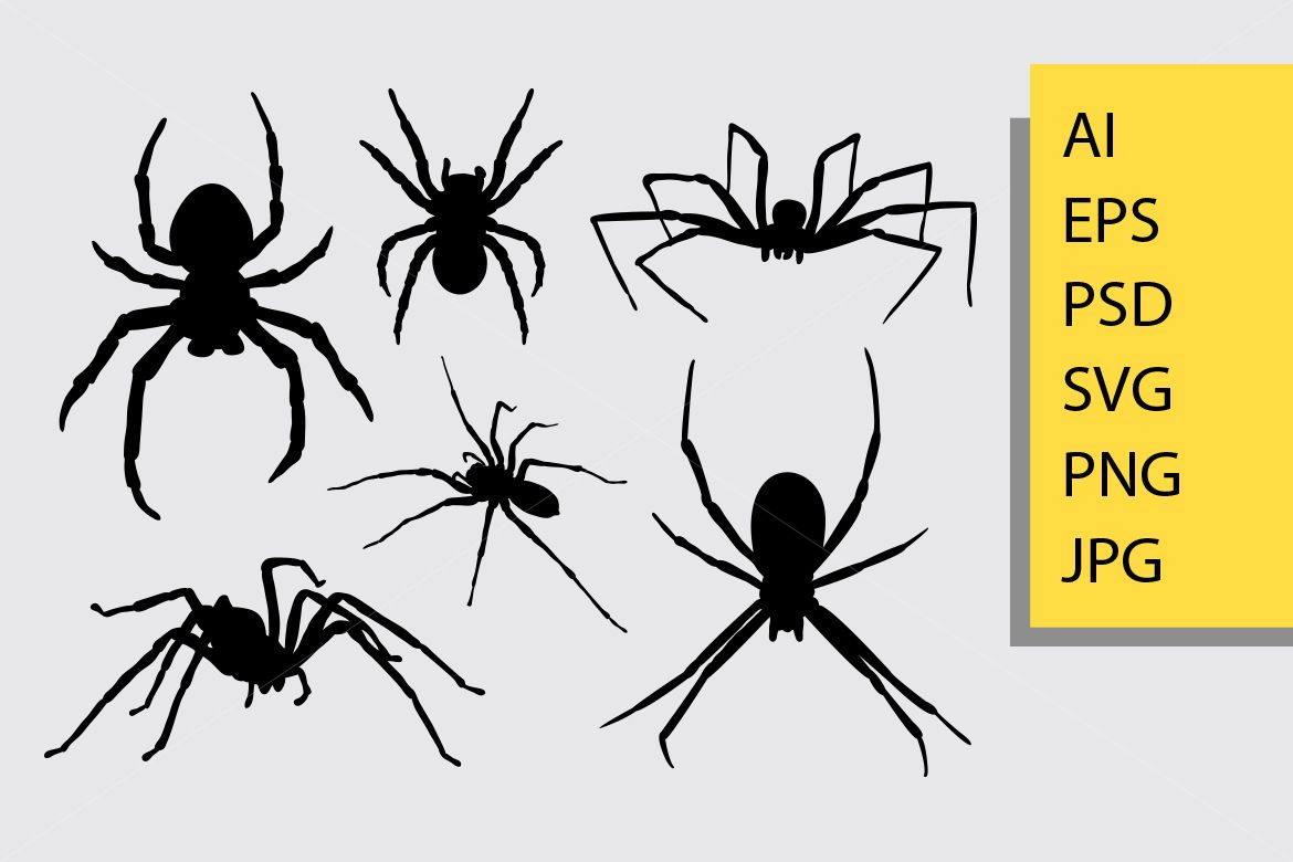 Spider Insect Animal Silhouette Good Use For Symbol Logo Web Icon Mascot And You Can Use