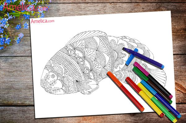 раскраски арт-терапия скачать бесплатно для взрослых (с ...