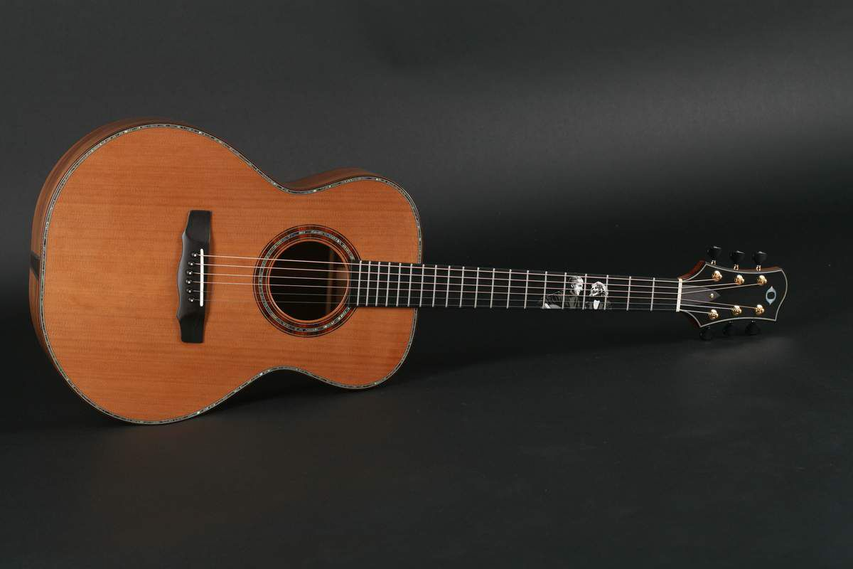 James Olson A Custom Tribute Guitar To James Taylor And Carol King Back And Sides Are From Radiocarbon Dated 50 000 Guitar Childrens Earrings Acoustic Guitar