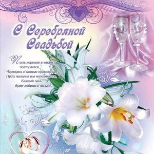 Поздравления с серебряной свадьбой прикольные в стихах от друзей 96