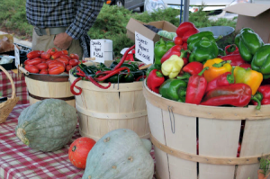 Season Preview: Urbana's Market at the Square 2014
