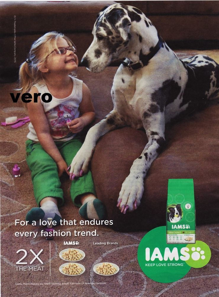 IAMS dog food 2015 GREAT DANE magazine ad print art ...