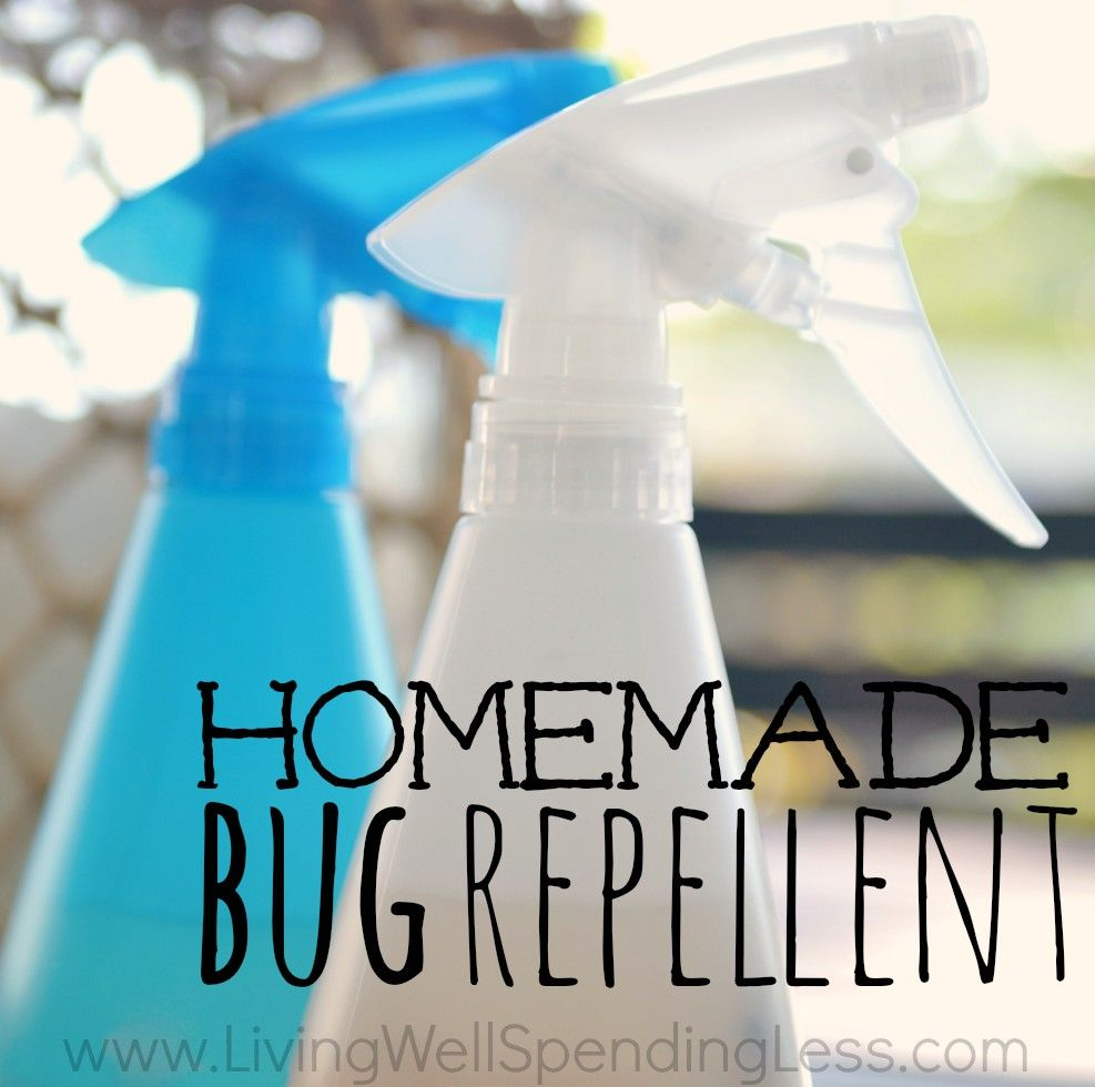 Homemade Bug Repellent | Natural Insect Repellent | DIY Bug Spray