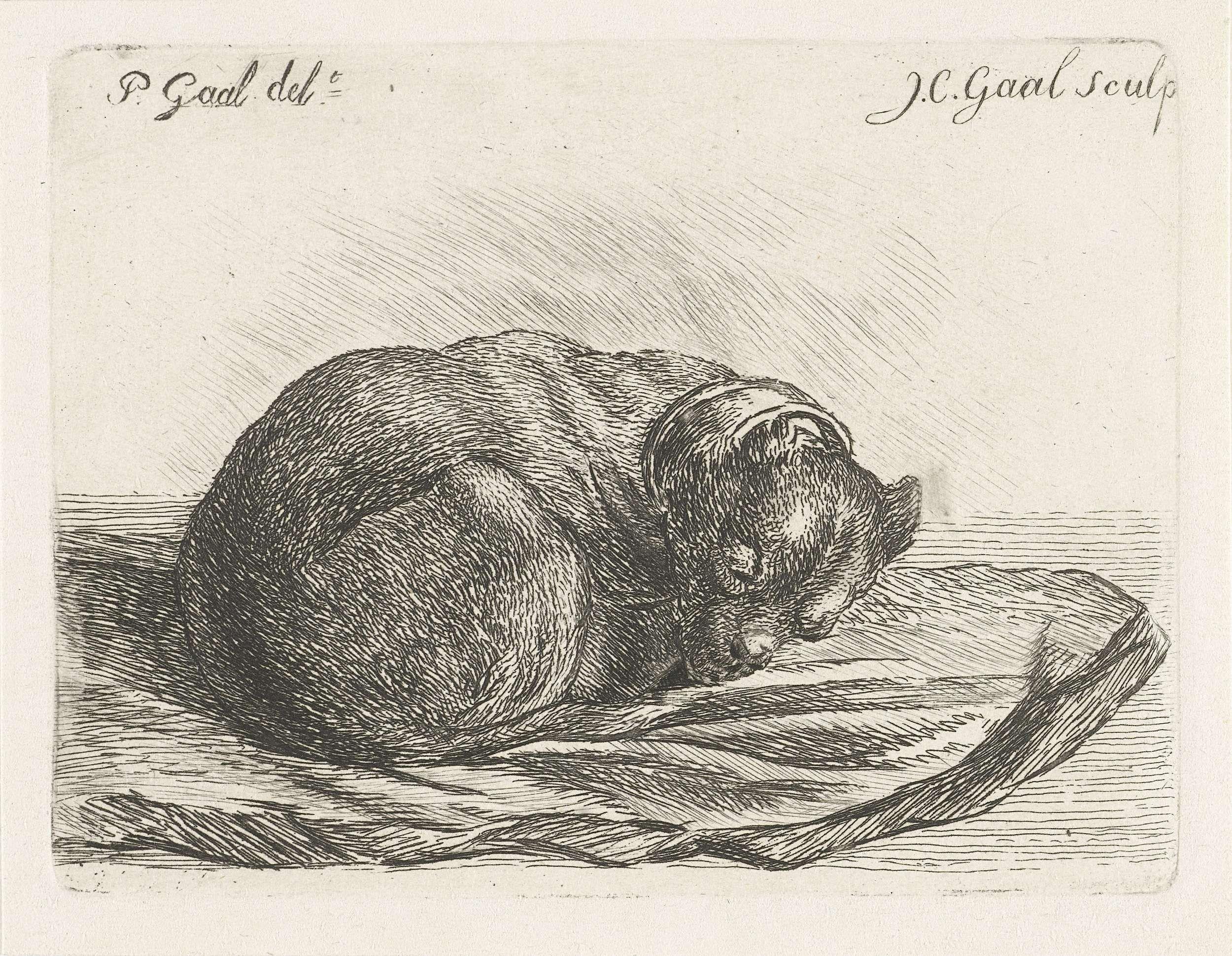 Jacobus Cornelis Gaal | Slapende hond, liggend op een deken, Jacobus Cornelis Gaal, 1851 |