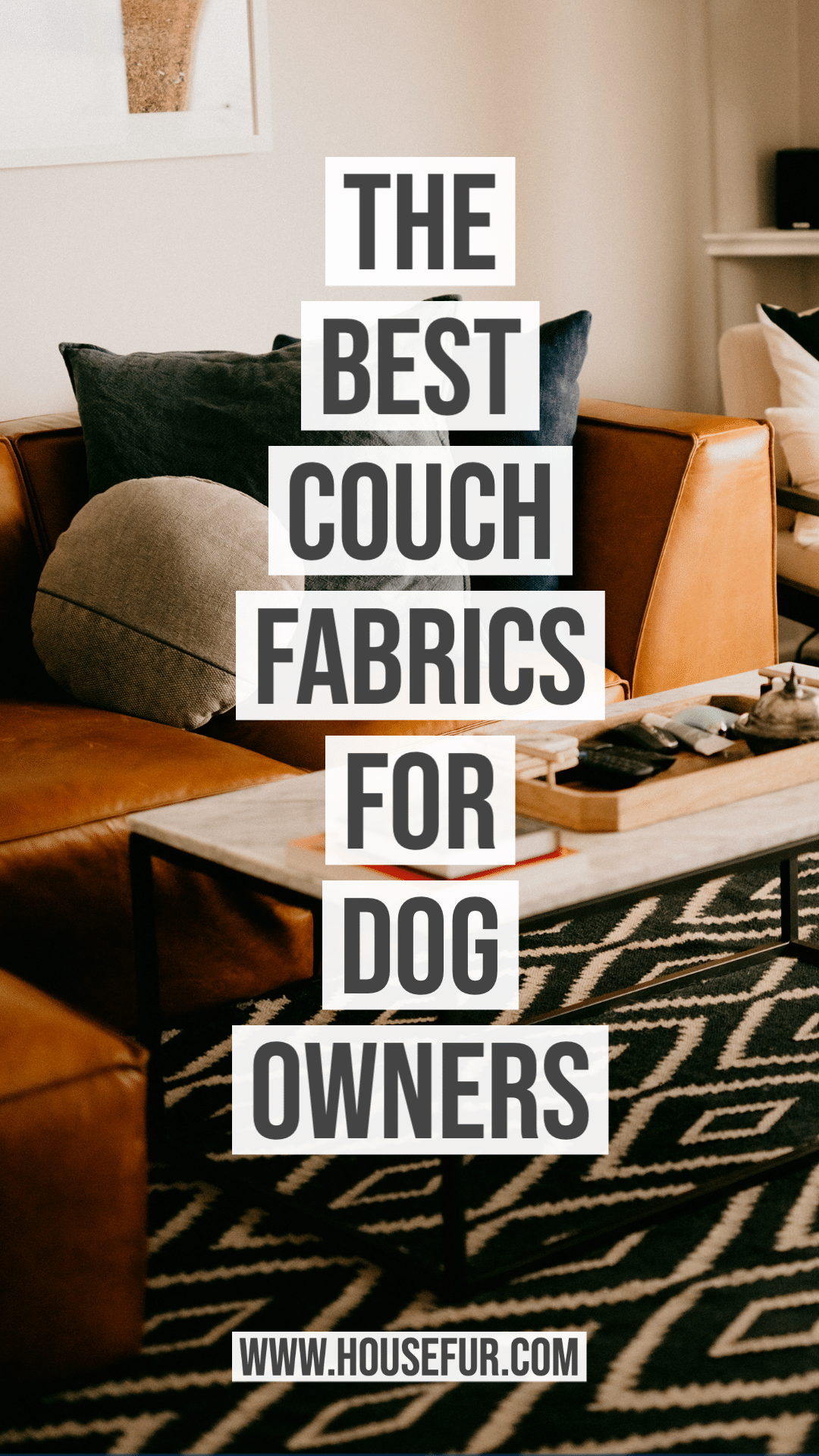 The Best Sofa Fabrics For Dog Owners In 2020 Cool Couches