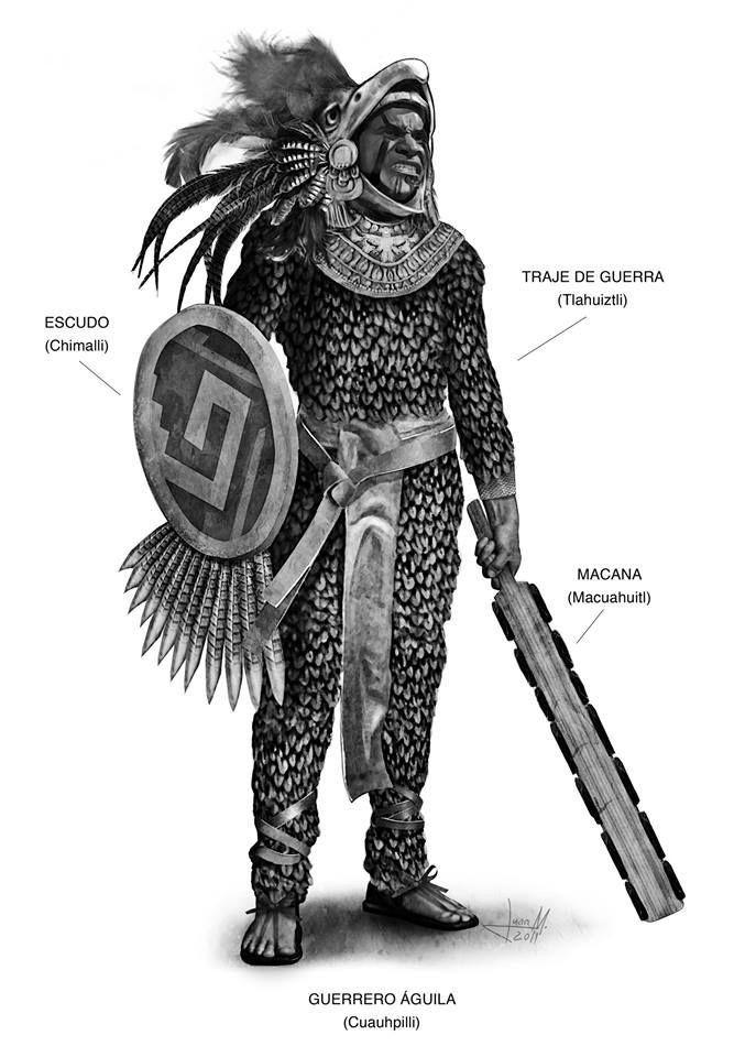 Guerrero Aguila De Elite Mexica Tatuajes De Guerreros Aztecas Guerrero Azteca Aztecas Dibujos