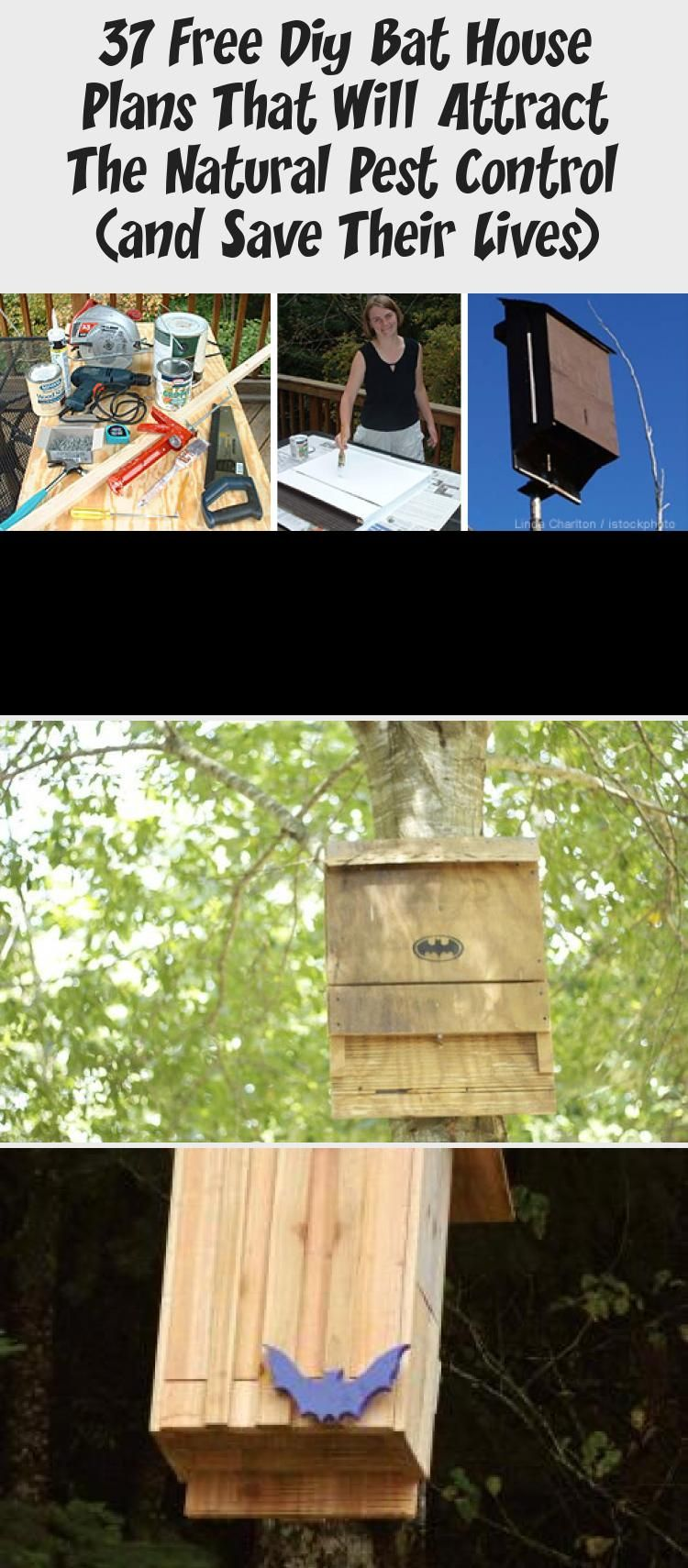 37 free diy bat house plans that will attract the natural