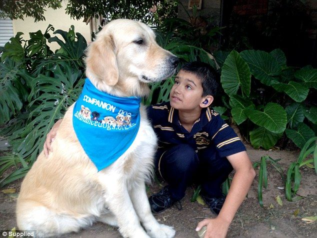 Assistance dogs change the lives of children on the autism spectrum