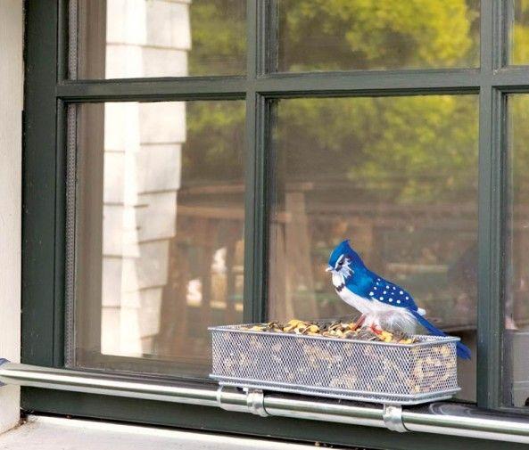 Windowsill Bird Feeder Diy Made With Tension Curtain Rod Mesh