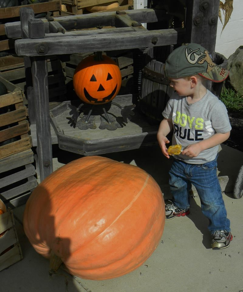 Pumpkin Man and Boys Rule