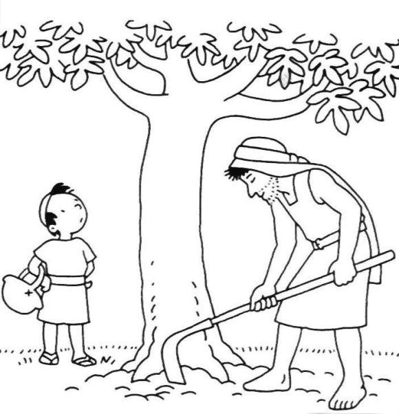 Fig Tree Coloring Page | Tree coloring page, Fig tree ...