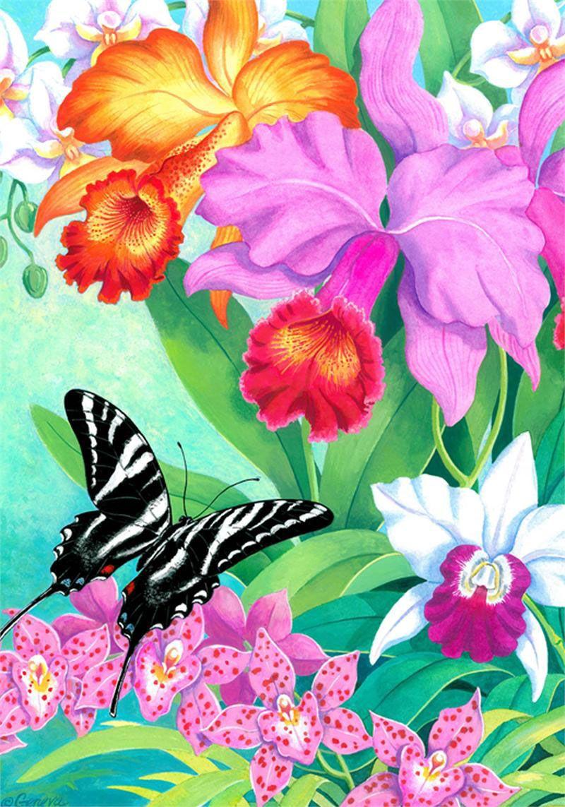 Яркое настроение от разных авторов..Frederick Szatkowski | Flower ...