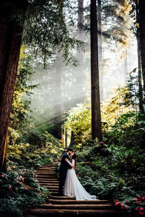 Top 60 Most Ethereal Redwood Forest Wedding Ideas