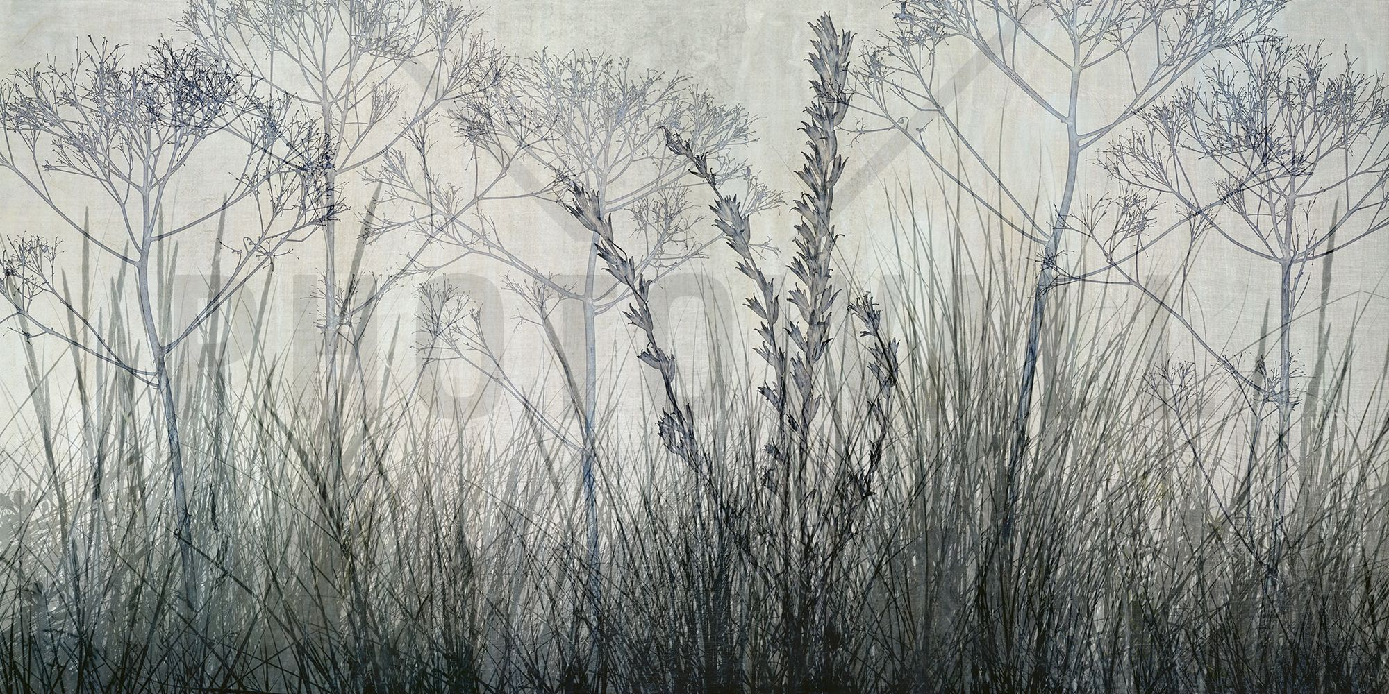 Wildflowers Lining the Trail - Bluegrey - Fotobehang