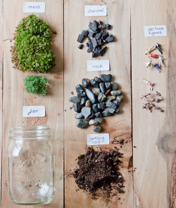Photo of Make your own beautiful terrarium – 10 inspiring ideas