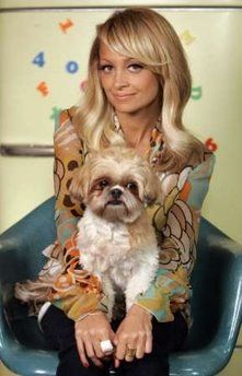 Nicole Richie A Famous Shih Tzu Lover And Her Honey Child Pretty