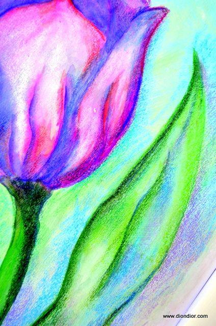 Watercolor Pencil Purple Tulip by DionDior, via Flickr