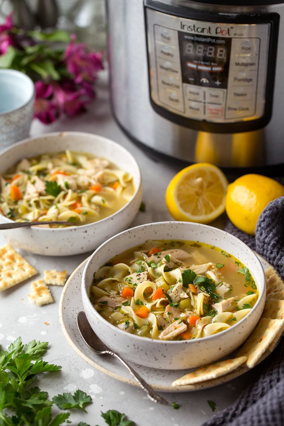 instant pot chicken noodle soup recipe with carrots egg