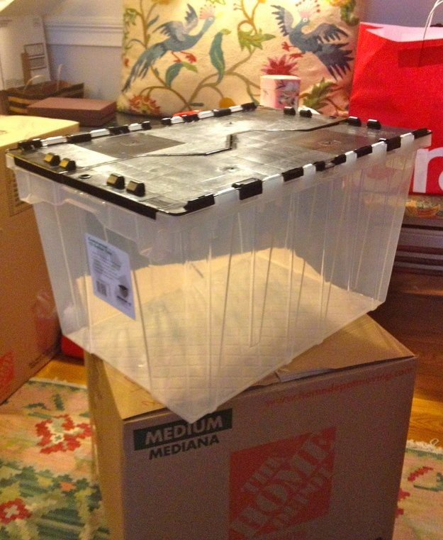 Moving Tip: Pack the items you will need FIRST in a clear plastic bin. The clear bin allows you to see inside; it also separates itself from the myriad of cardboard boxes. #Moving #MovingTips #Movers