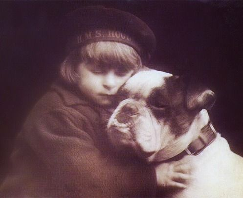 Little Boy And His Pup Buster Brown Boston Terrier Dogs