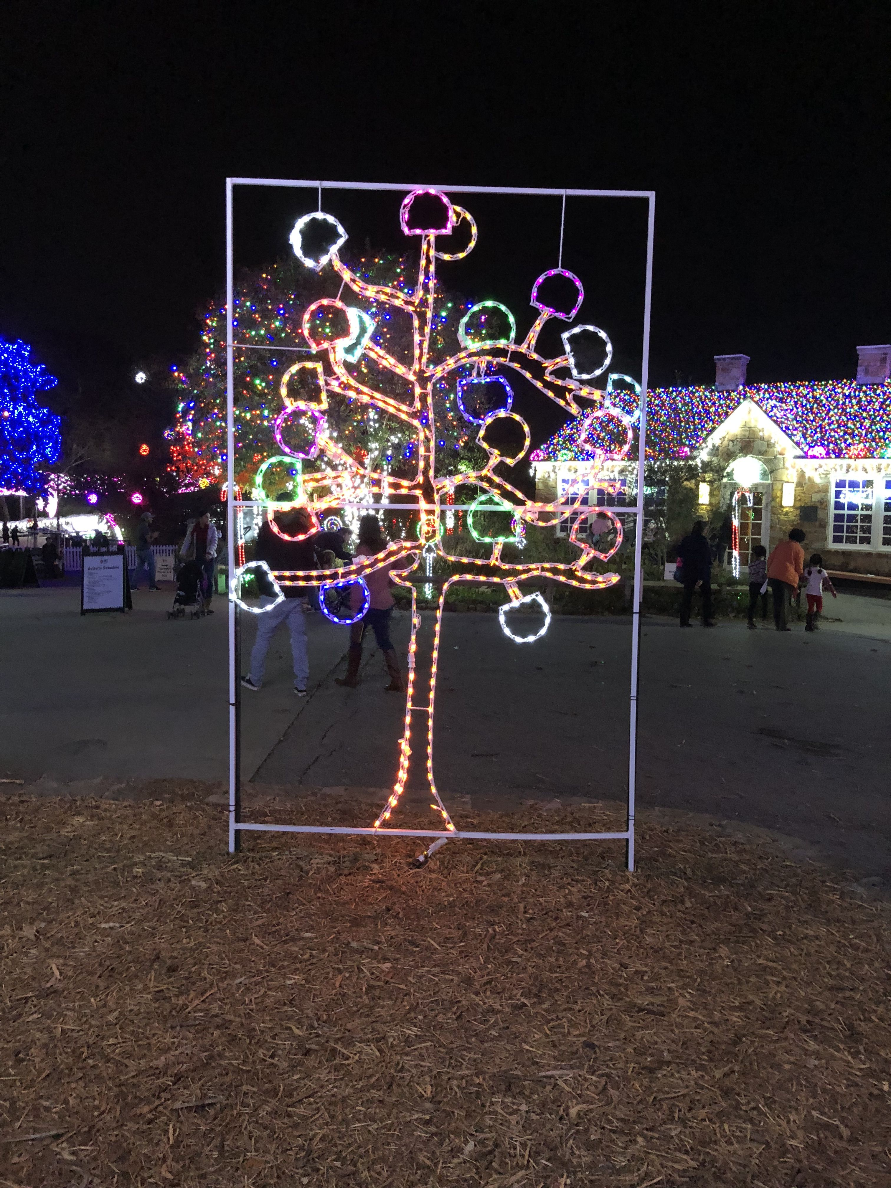 Light Tree Sculpture At Dallas Zoo During Dallas Zoo Lights Event