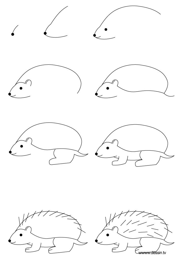 hedgehog drawing learn how to draw a hedgehog with simple step by