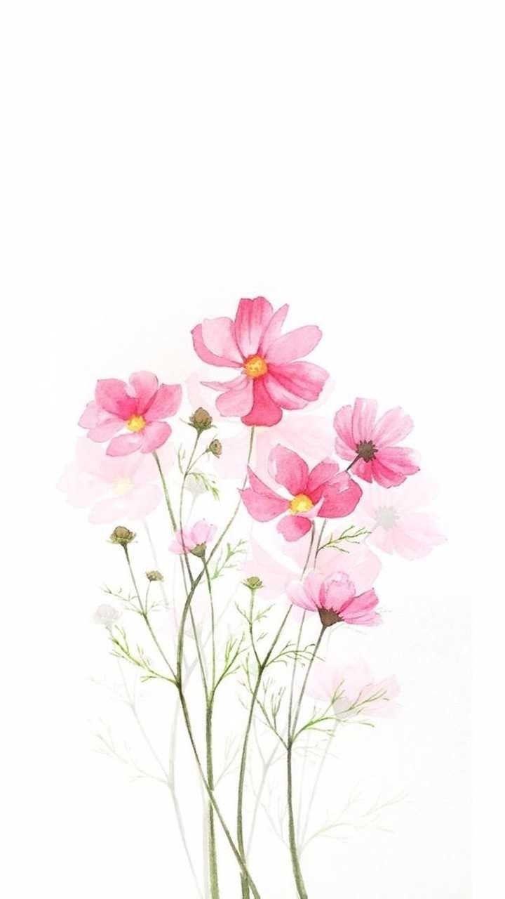 Pin By Cari Lopez On Oboj Na Telefon Flowery Wallpaper Flower Painting Watercolor Flowers