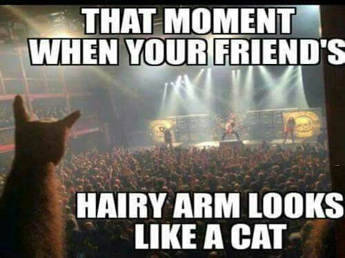 Hairy arm