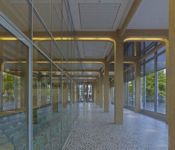 META MAGAZINE | archicake daily - 坂茂以日本工藝建造Tamedia大樓 為瑞士最大木結構建築