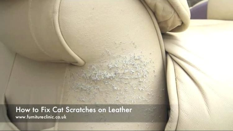Fix Tears In Leather Couch