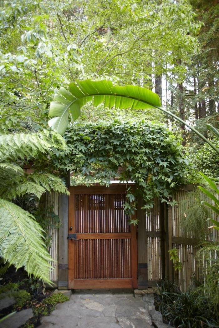 A gate in mill valley california on the other side for Garden design mill valley