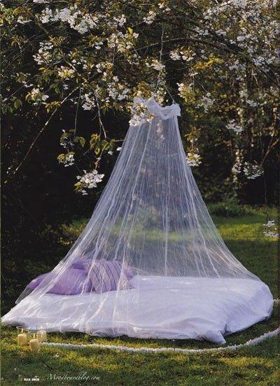 Garden canopy bed