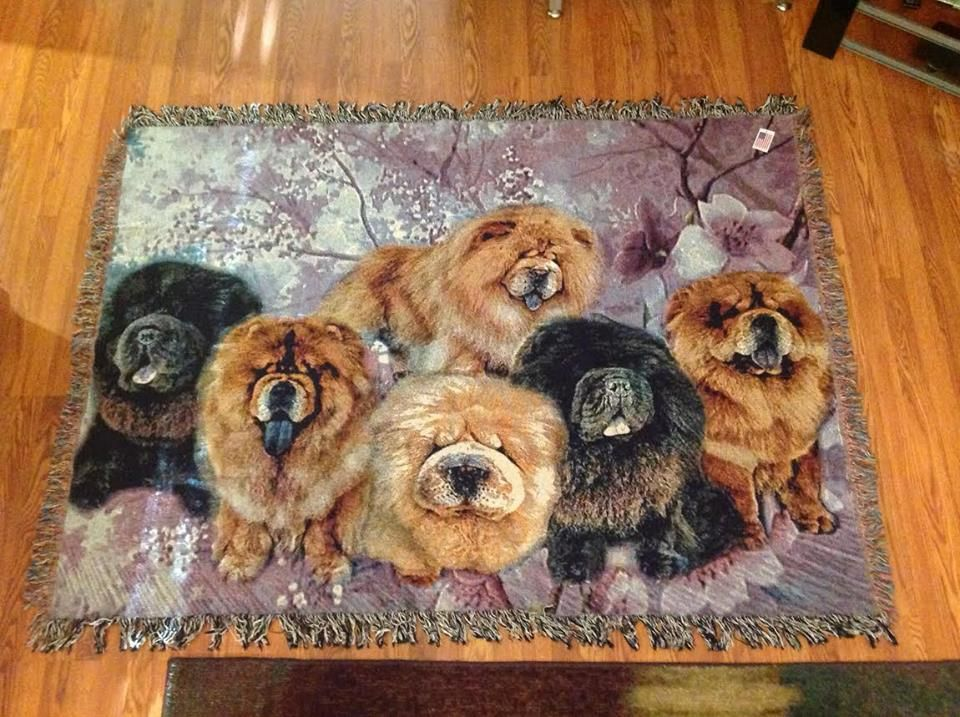 #chows We were able to use all 6 of our customers beautiful chows located in Malaysia to create this work of art..#pets